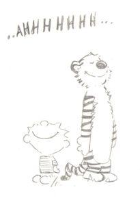 Calvin et Hobbes150