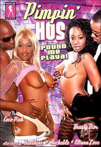 dvd porno pimpin pesu