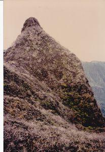 orohena 1994