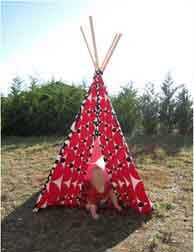 http://img.over-blog.com/208x264/2/65/32/62/image-6/tipi-zoelioth.jpg