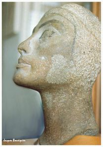 Nefertiti Musee Egyptien du Caire