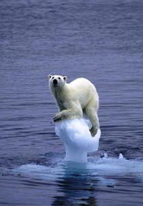 fonte-glaciers.jpg