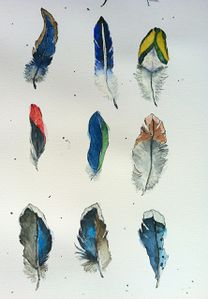 60Feathers_Part7_MR.jpg