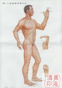 acupuncture-cote.jpg