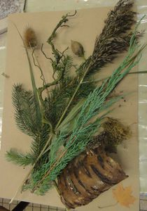 Atelier-de-Flo-08-Tableau-Vegetal-Flo Megardon10