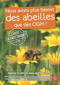 OGM ABEILLES