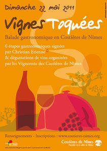 les_vignes_toquees_illustration-copie-1.jpg