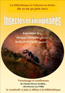 affiche insectes 3