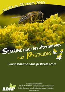 affiche pesticides abeille HD
