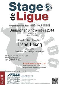ob c6c655 2014stage-de-ligue-ire-ne-lecoq