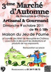 nlc_3eme-marche-d-automne_2011-10.jpg