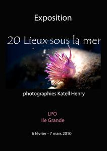 affiche-KHenry-LPO-2010-medium