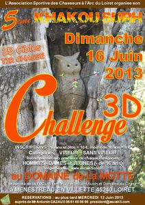Affiche-3D-2013-v2.jpg