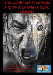 Cartel-Asociacion-animales-copia-II.jpg