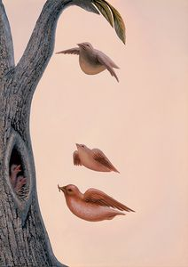dessin-illusion-oiseaux.jpg