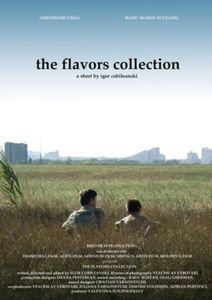 the-flavors-collection.jpg