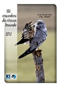 Rencontres Busards 2012-1
