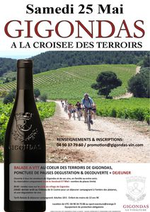 affiche croisee terroirs 2013