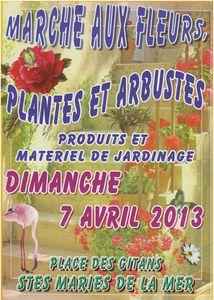 marche-fleurs-2013.jpg