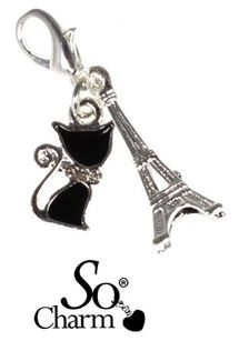 collier-porte-charms9-copie-1.jpg