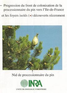 inra_chenille-processionnaire-du-pin.jpg