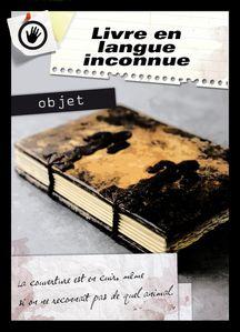 objet-livre-en-langue-inconnue.jpg