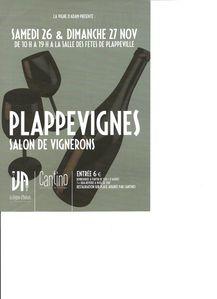 plappevignes1.jpg