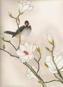 Oiseau-et-magnolias.jpg