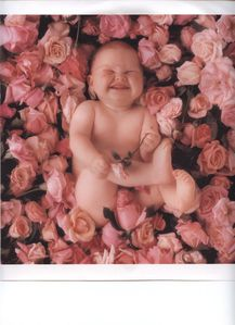 BEBE ANNE GEDDES 001