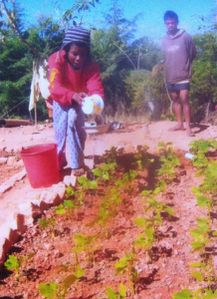 Association madagascar - enfants de Tana - 2013-4