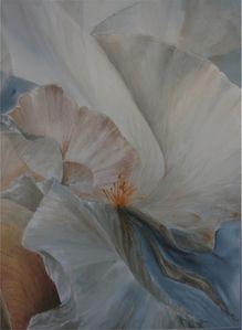 coeur-d-iris-2.jpg