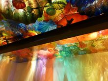 montreal chihuly plafond 14