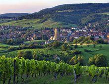 Arbois--ville-et-vignoble-Racines-et-des-ailes-BlogOuvert.jpg