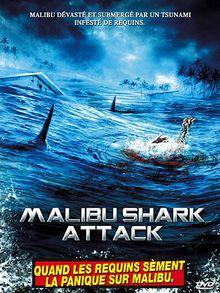 malibu-shark-attack-2.jpg