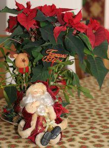Noël_fêtes_patch et fantaisies_