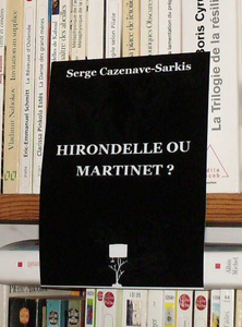 Hirondelle ou martinet2
