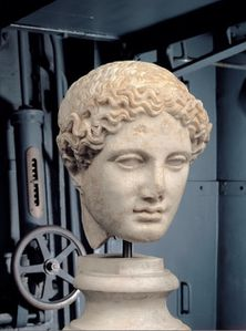 Head-of-the-Hera-BorgheseI-century-AD.jpg