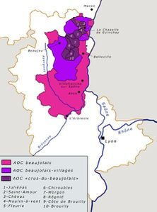 Carte-du-vignoble-du-Beaujolais.JPG