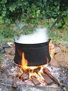 marmite--copie-1.jpg