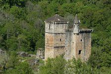3931314-medievale-du-chateau-dans-la-foret-france.jpg