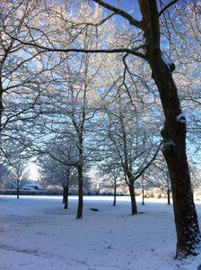 neige-5646.JPG