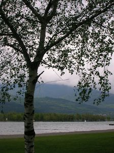 Weed-end-a-Embrun-021.JPG