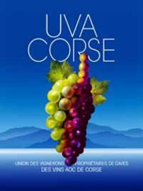 UVA-CORSE illustrationEtab