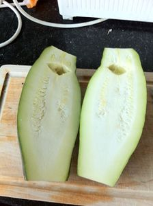courgette-coupee.JPG