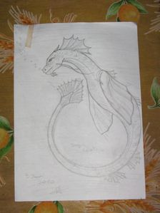 essai-dragon-chinois.jpg