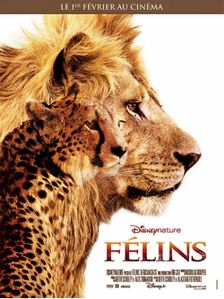 felins-disney-nature.jpg