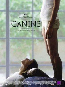 photo-canine-affiche-film-yorgos-lanthimos-films7.jpg