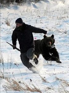 run-from-bear