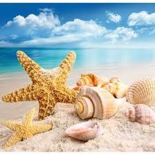 étoile plage et paysage