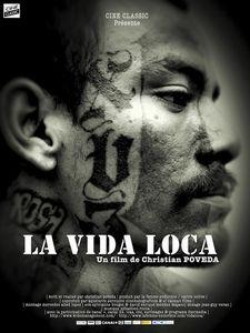 Lavidaloca--640x480-.jpg